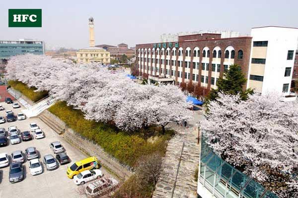 Đại Học Pyeongtaek Ngôi trường với cảnh sắc tuyệt đẹp
