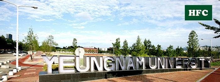 Trường Đại Học Yeungnam - Trường Top 1% Visa Thẳng Hàn Quốc