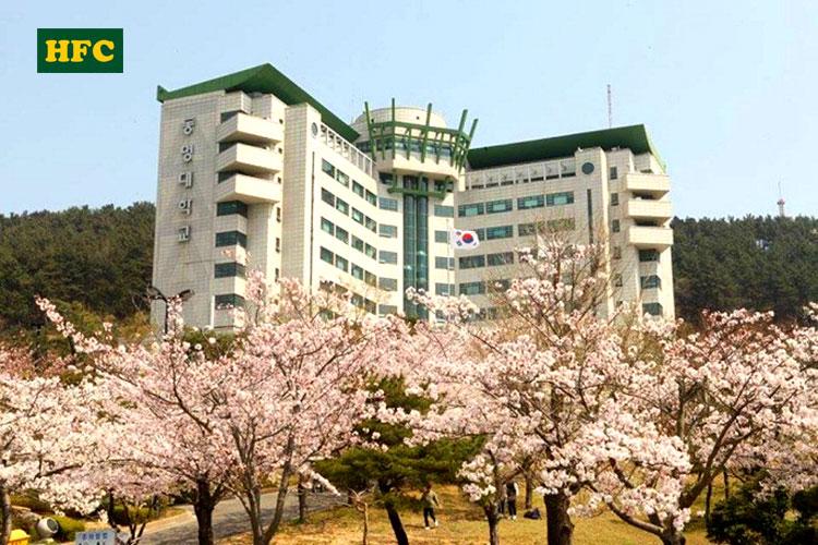 Du học Hàn Quốc Trường Đại học Tongmyong Hàn Quốc – 동명대학교