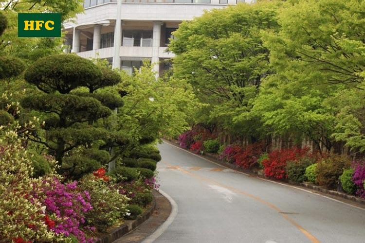 Cao đẳng khoa học Jeonbuk – chi phí thấp, visa dễ dàng